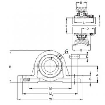 NKE PASE20-N bearing units