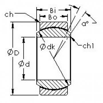 AST GEFZ25T plain bearings