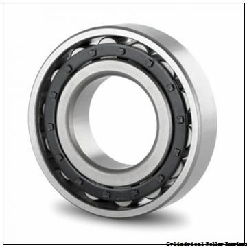 80 mm x 125 mm x 22 mm  FBJ NU1016 cylindrical roller bearings