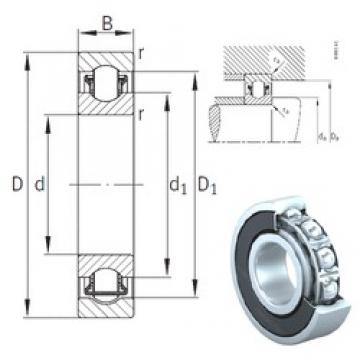 25 mm x 62 mm x 17 mm  INA BXRE305-2HRS needle roller bearings