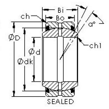 AST GE20ES-2RS plain bearings