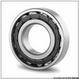 20 mm x 52 mm x 15 mm  CYSD N304E cylindrical roller bearings