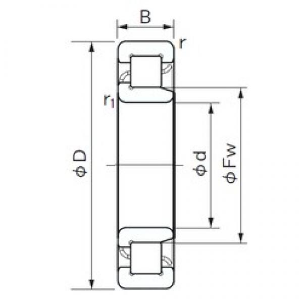 25 mm x 52 mm x 18 mm  NACHI NJ 2205 cylindrical roller bearings #3 image