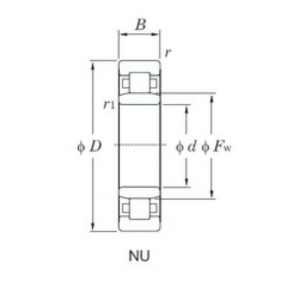 55 mm x 120 mm x 43 mm  KOYO NU2311 cylindrical roller bearings #3 image