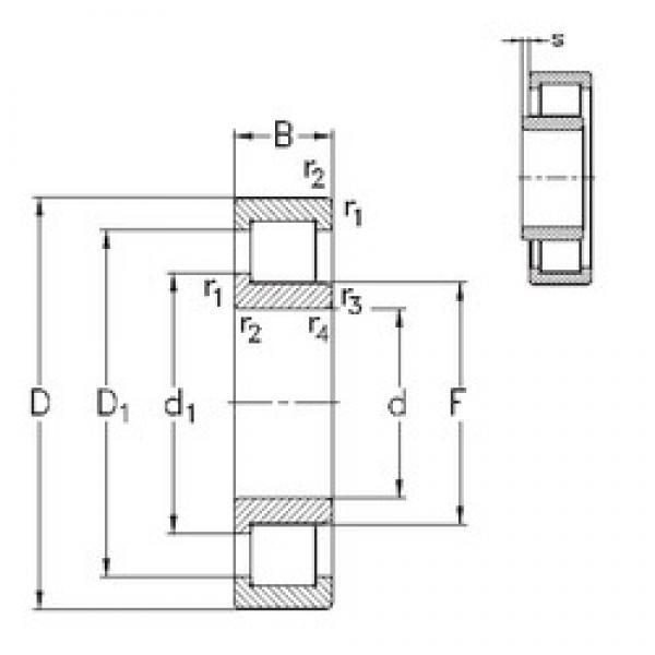 130 mm x 280 mm x 58 mm  NKE NJ326-E-TVP3 cylindrical roller bearings #3 image
